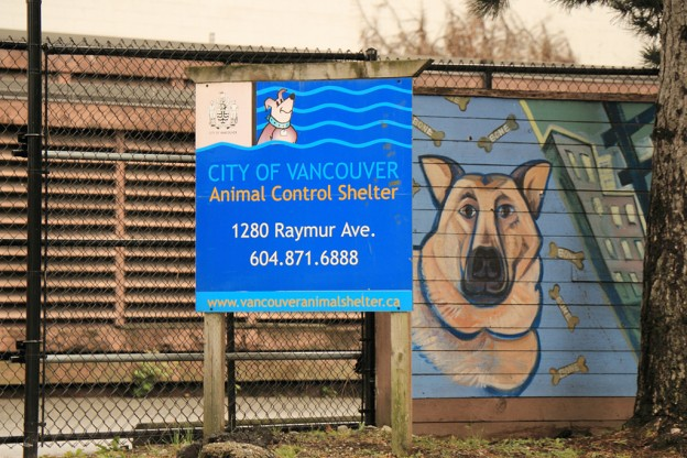 Vancouver animal shelter - Building renovation by Olympic Projects